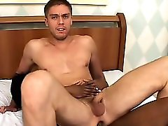 Tranny With Bbc Fucks Hard Metropolis