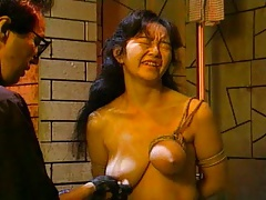 Hanging Tits